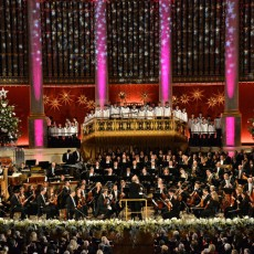 Christmas in Vienna – 2016